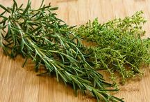 All About Herbs / by Katie Taylor