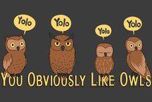 Owls / by Katie Newray
