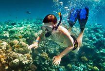 Thing To Do in Bali / Kegiatan seru saat liburan ke Bali, bersama Travel profesional di Bali dan jasa sewa mobil di Bali maka keliling Bali tentunya akan lebih mantap