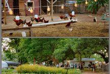 detska farma