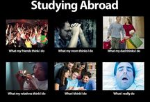 Studying abroad / Life in university