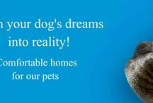 Large Dog Houses / Informations about dog houses and supplies