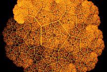 Посты о технологиях Wolfram на Хабрахабре