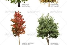 puita ja muita kuvia