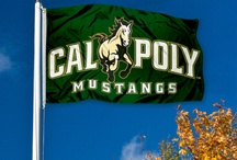 Cal Poly SLO / Welcome to California Polytechnic University in San Luis Obispo. Info & Tips for Cal Poly College Students. Go Mustangs!