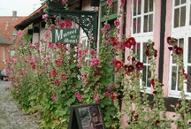 Reissukohteet Bornholm / Bornholm