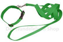 Es grünt so grün... / Halsbänder, Brustgeschirre und Hundeleinen in vielen verschiedenen Grüntönen
