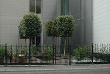 Compacte tuinen / kleine stadstuinen, dakterrassen, voortuinen, etc. Hier vindt u diverse oplossingen om een kleine buitenruimte toch bijzonder te maken. Onze tuinarchitect maakt een tuinontwerp en onze vakbekwame hoveniers voeren alles tot in detail uit.