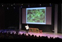 Sustainable/Local Food / sustainability, local food, organic food