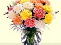 Color of joy-2  / Colorful flowers bursting with energy. Shower their joyous spirits on everyone around......