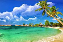Beauty of Andaman / This board is about the Beauty of Andaman Island.....We will describe the each & every thing of Andaman Island...