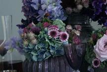 jamie aston / Florist