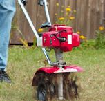 Tuesday's Tips / Our weekly selection of tips & hacks to help in your lawn and garden