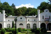 Roskosz - Pałac / Pałac w Roskoszy powstał w latach 30-tych XIX w. dzięki inicjatywie Teodora Michałowskiego. Po upaństwowieniu mieściła się tu szkoła podstawowa, potem przedszkole. Obecnie znajduje się tu Europejskie Centrum Kształcenia i Wychowania.