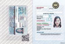 Đổi bằng lái xe quốc tế tại Lạng Sơn