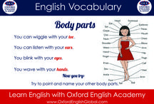 Learn English with Infographics / Here you'll find infographics that explain parts of the English language in a simple and visually pleasing way. With these English infographics, you'll be able to learn English quickly and easily.