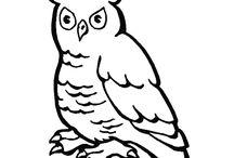 Coloriages d'oiseaux / Hirondelles, aigles, vautours, cygnes, perroquets…. plusieurs espèces d'oiseaux à colorier vous attendent dans ce tableau. En plus du coloriage vous pourrez aussi apprendre un peu plus sur votre animal à plumes préféré, alors à vos crayons !