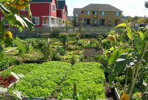eco neighborhoods