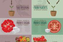 Fruits to grow