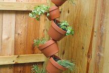 herb garden ideas / by Jen Mccarrick