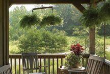 I'm Gonna Have a Pretty Yard One Day / by Rachael Claxton