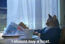 I should buy a boat / Boats boats boats