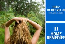 Home Remedies for Head Lice / How To Get Rid Of Head Lice