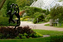 Art & Sculptures at The Garden / by Missouri Botanical Garden