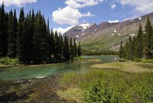 Fun In National Parks  / by Adventure Tykes