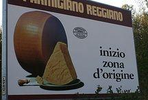 Emilia-Romagna Italy / Foodie Capital of Italy! / by Vino Con Vista