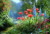 flores y jardines / flores y jardines