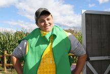 Corn Maze / Corn Maze fun on the farm