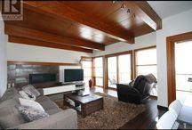 fireplace & tv storage