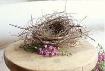 Birds and the Bees / BIRD...nests,baths,eggs and bee, skeps