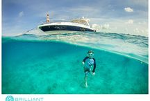 Caribbean Luxury Charter Tours
