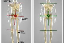 spinal exercise alignment