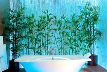 Eco Bathrooms / Inspiration for building your dream green bathroom