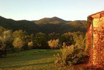 la nostra fattoria di Statiano, in Toscana www.agriturismostatiano.com / agriturismo #vacanze#Toscana #holidayrentals