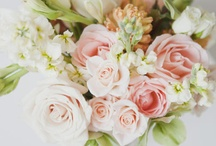 Flowers / by Cheryl Hatfield
