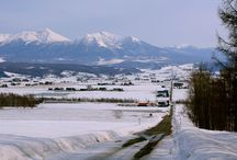 winter in Furano / Winter in Furano is covered with powder snow for skiing and snowboarding!