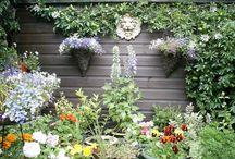 Mi jardín soñado / Amo la naturaleza en especial las flores, me encantan los jardines!! / by Florencia Bogarin