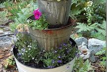galvanized buckets / by Lisa Brown