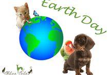 Earth Dayat wwwChloeCole.com / Happy Earth Day! #ChloeColePetCouture, #EarthDay, #SaveEarth www.chloecole.com