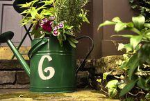 Garden/Home