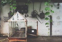 Gardening / Pottering around in the garden ideas