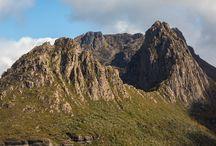 Wild Tasmania Web Series