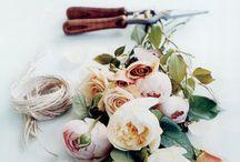 Floristics / by Polina Ilchenko