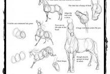 Desnhando cavalos