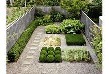 Gardening / by Brandy Massey