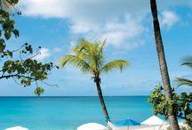 Caribbean Beaches / by Lisa Dworkin